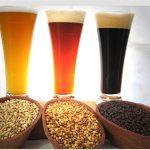 Ingredientes en la elaboración de la cerveza